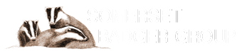 Somerset Badger Group
